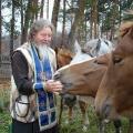 Рядом с лошадками.